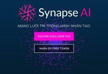 Synapse ICO