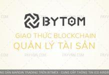 PayVNN Gioi Thieu ByTom