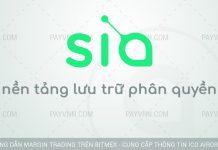 PayVNN Gioi Thieu Nen Tang Luu Tru Phan Quyen SiaCoin