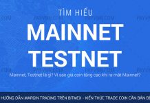 Mainnet Testnet là gì