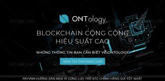 PayVNN-Giới-Thiệu-blockchain-Ontology