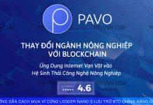 PayVNN Giới thiệu dự án ICO PAVOCOIN