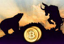 Bitcoin Bull Bear