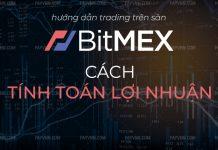 Loi Nhuan Margin Bitmex