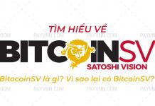 Bitcoin SV la gi